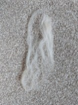 Image of cream wool roving teased into fine strips for wet wool felting and laid out vertically