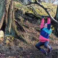 Image of girl in pink and green top swinging from low tree branch with tree trunks and miniature fairy door in background