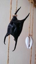 mermaids-purse-hanging-on-string