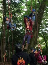 children-in-harnesses-climbing-tree