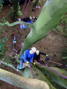 man-and-woman-climbing-tree-viewed-from-above