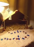 wooden-advent-crib-on-table-with-straw-but-otherwise-empty