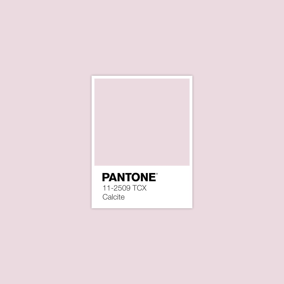 Silky Sheerness Color Palette 10