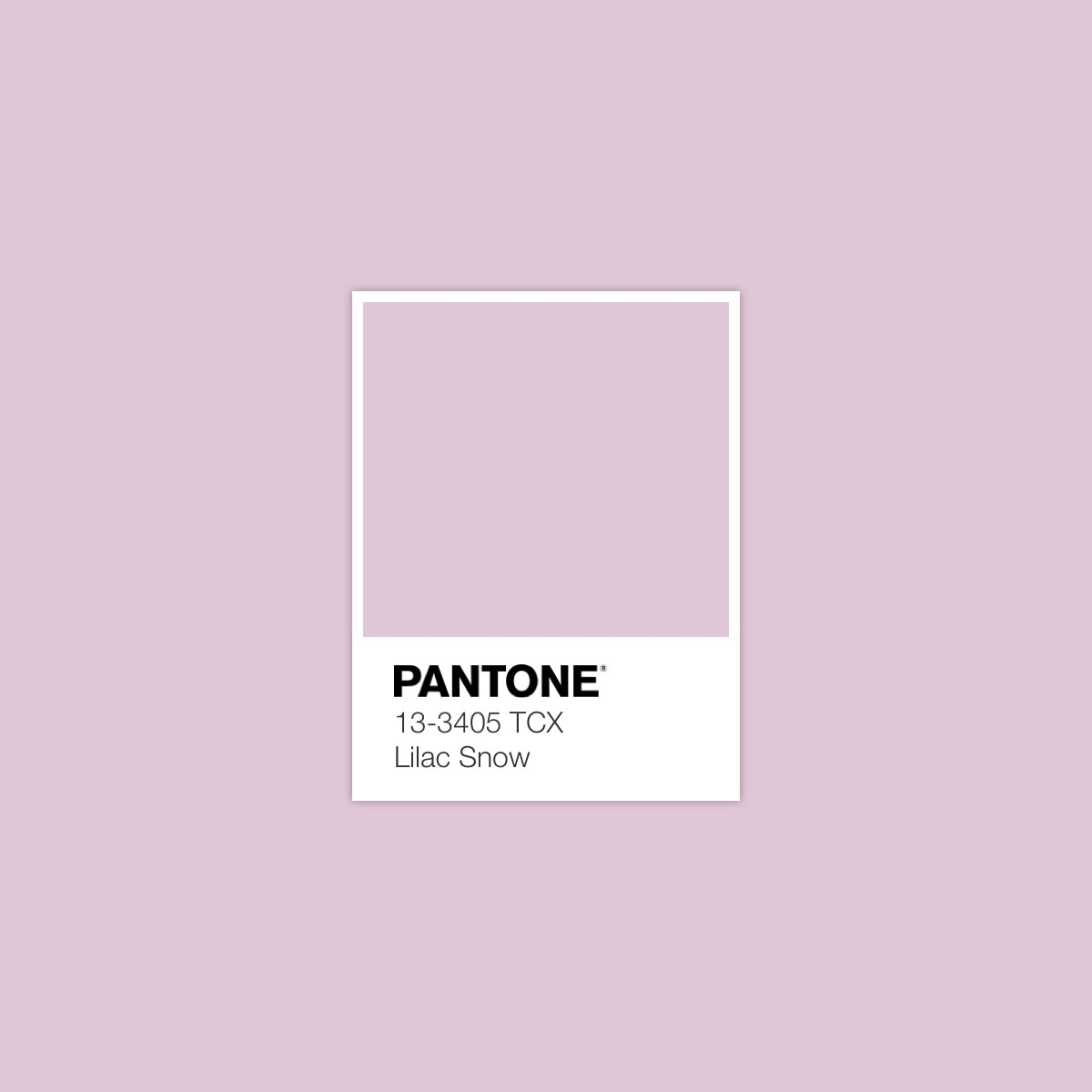 Silky Sheerness Color Palette 12