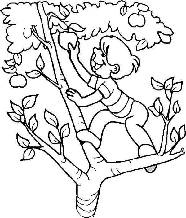 A Boy Climb An Apple Tree Coloring Page : Kids Play Color