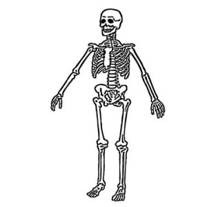 Happy Halloween Mr Skeleton Coloring Page : Kids Play Color