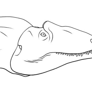 Vicious Allosaurus Coloring Page : Kids Play Color