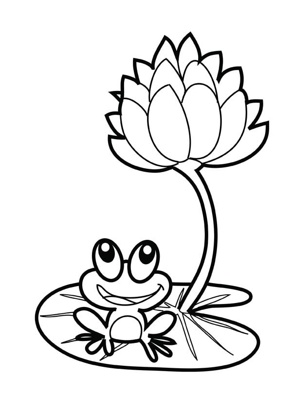 Lotus Flower And A Frog Coloring Page : Kids Play Color