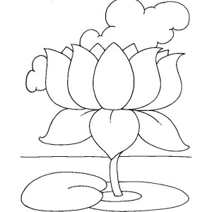 Drawing Of Lotus Flower Coloring Page : Kids Play Color