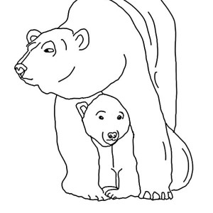 Polar Bear And Big Seagull Coloring Page : Kids Play Color