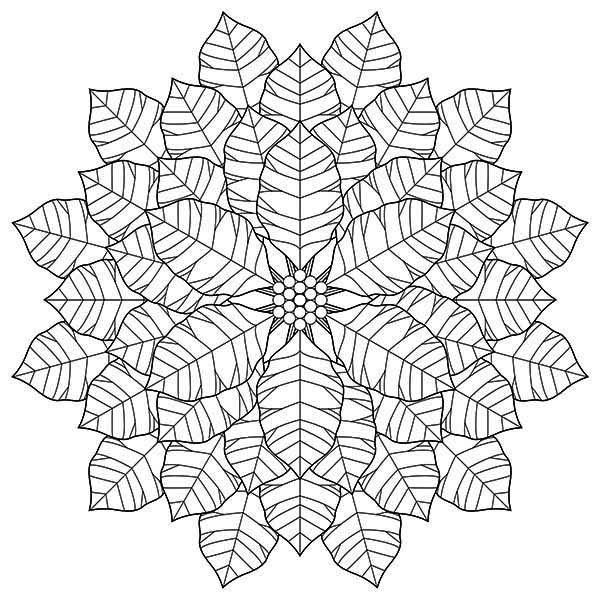 Geometric Poinsettia Drawing For National Poinsettia Day