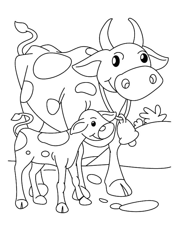 Cows Walking Beside Her Calf Coloring Pages : Kids Play Color