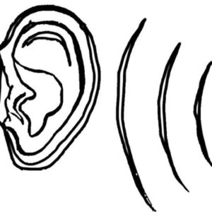 My Ear Can Hear You Coloring Pages : Kids Play Color