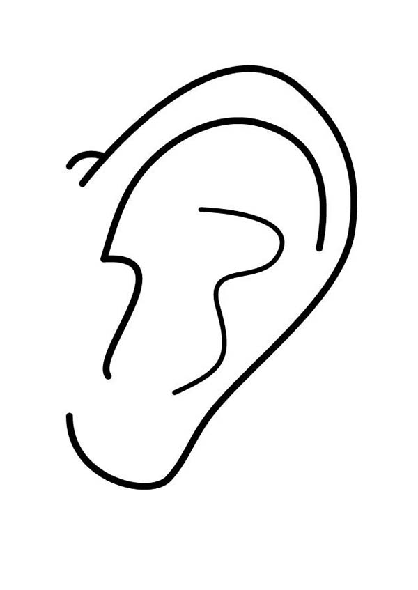 Ear Picture Coloring Pages : Kids Play Color