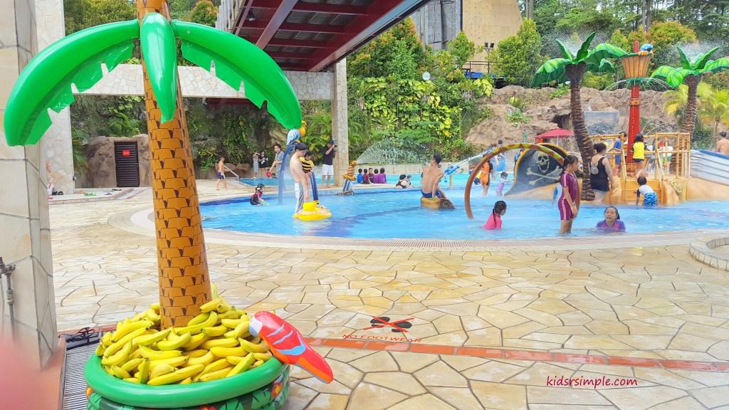 Aloha Pool Party