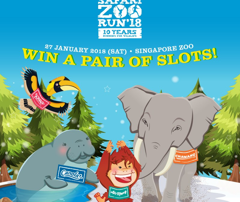 Safari Zoo Run 2018 – 10th Year Running for Wildlife