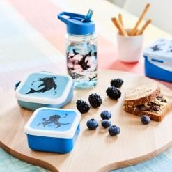 snackbox set zeedieren