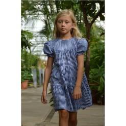 geruite jurk blauw wit