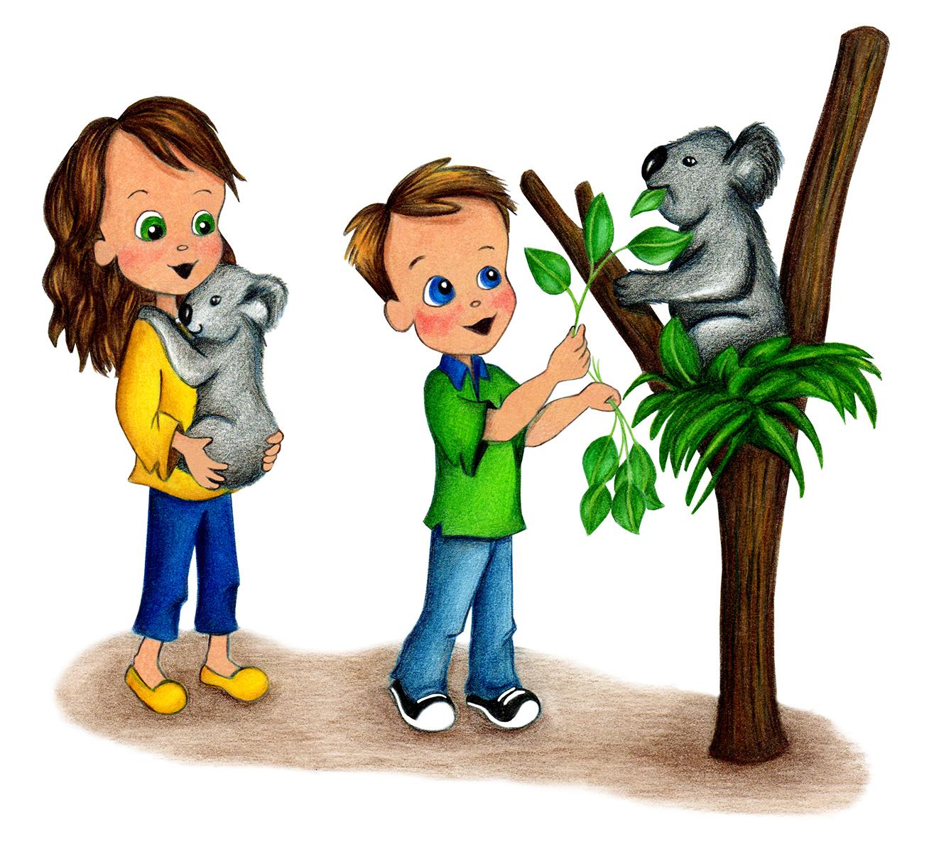 Koala illustration in Molly Goes to Sydney