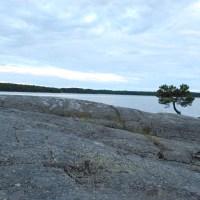 Mittsommer am Vänern-See