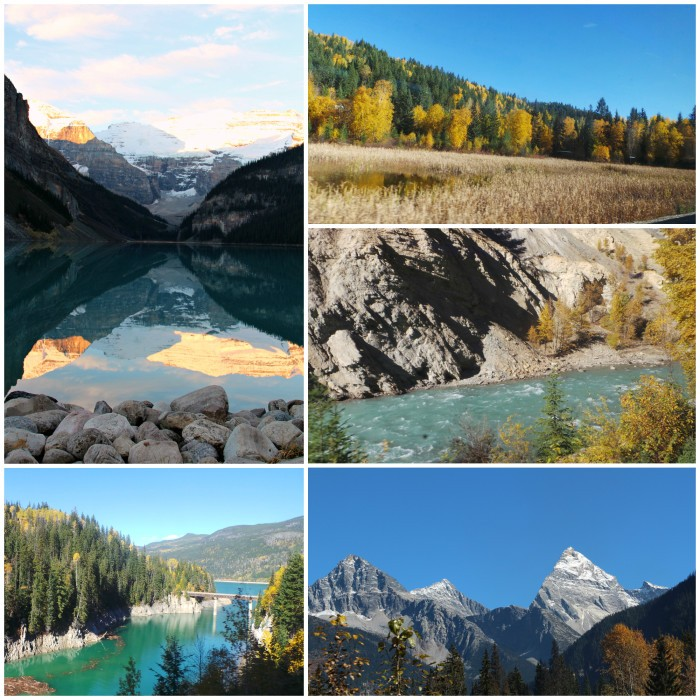 scenery collage