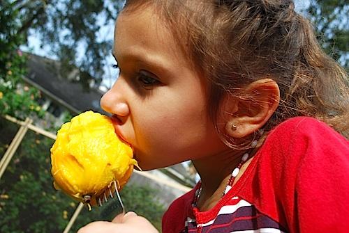 Mango Snack- Kid World Citizen