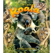 Life Cycle of A Koala- Kid World Citizen