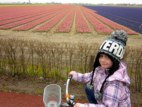 Cycling in the flower fields in Lisse the Netherlands- Kid World Citizen