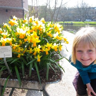 Visiting the botanical gardens in Leiden- Kid World Citizen