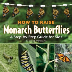 How to Raise A Monarch- Kid World Citizen