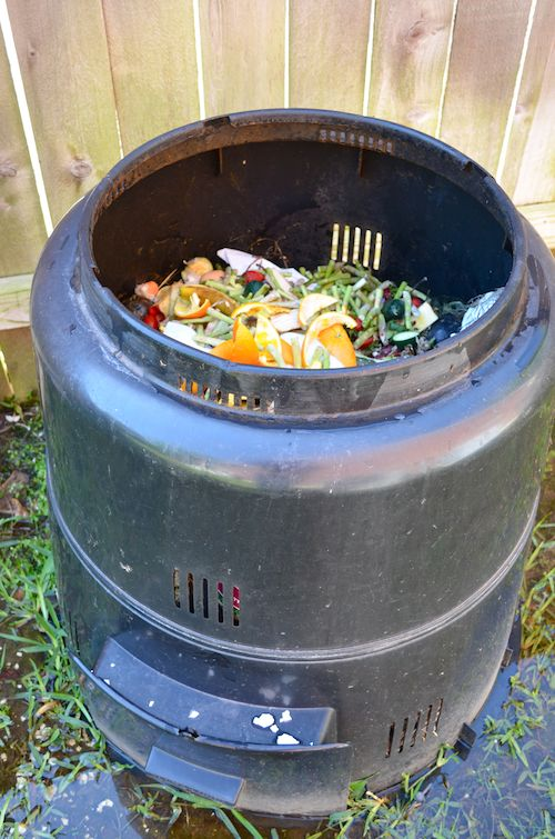 Compost Bin- Kid World Citizen