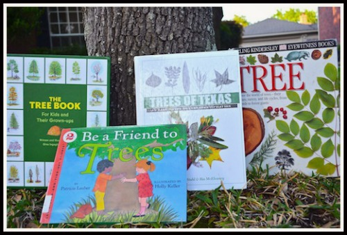 Kids Learn about Trees- Kid World Citizen