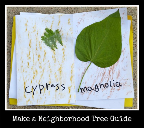 Make Neighborhood Tree Guide for Kids- Kid World Citizen