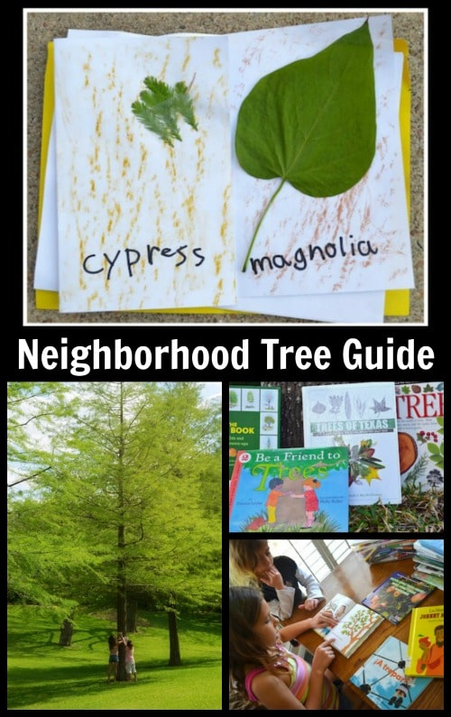Neighborhood Tree Guide Kids- Kid World Citizen