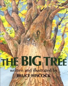 The Big Tree for Kids- Kid World CItizen