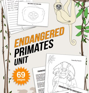endangered species unit for kids primates lesson
