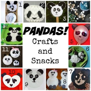 Panda Crafts Panda Snacks- Kid World Citizen