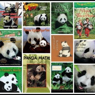 Panda Facts Books Lesson Plans- Kid World Citizen