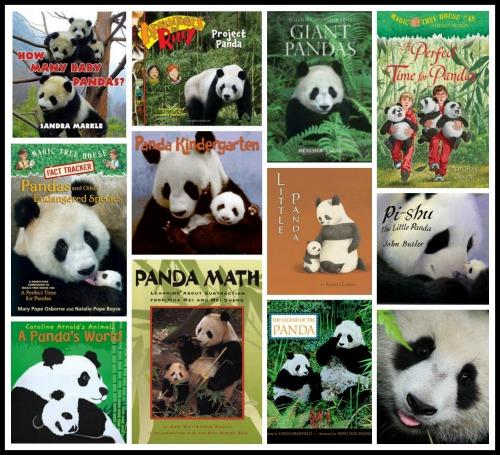 Panda Facts Books Lesson Plans- Kid World Citizen