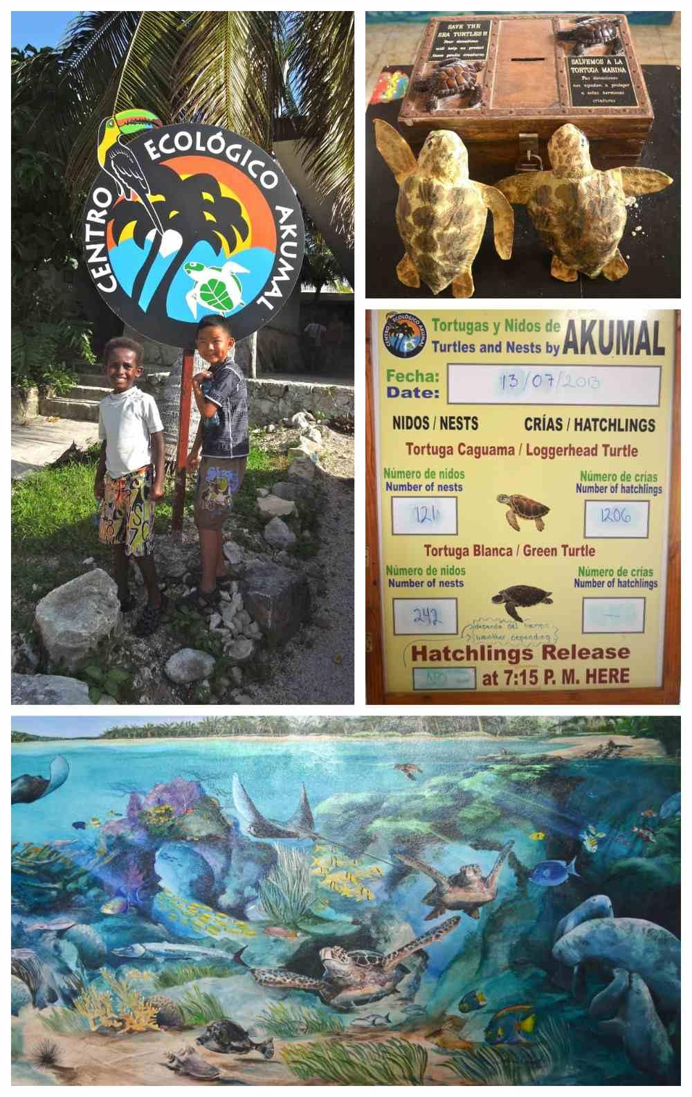 Centro Ecologico Akumal- Kid World Citizen