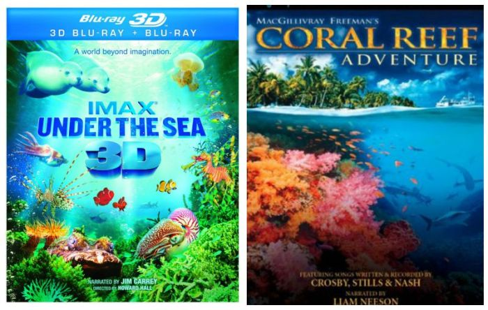 Coral Reefs Documentaries for Kids- Kid World Citizen