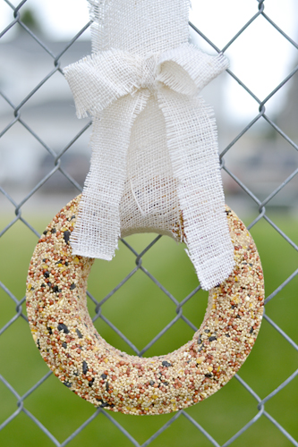 Bird Seed Christmas Wreath- Kid World Citizen