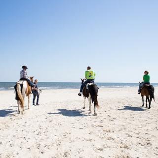 Horseback Riding Gulf Shores Florida- Kid World Citizen
