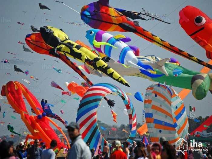 Cervia Kite Flying- Kid World Citizen