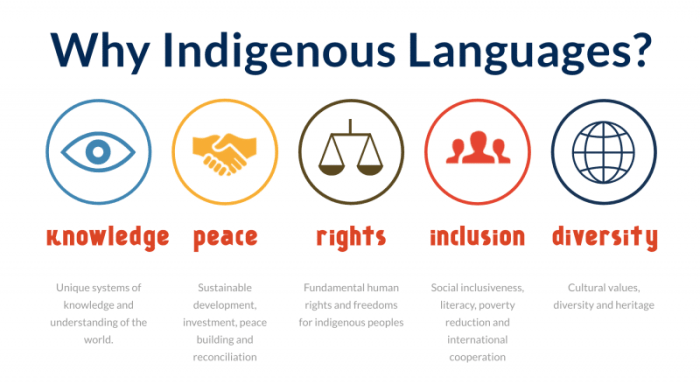 Why Indigenous Languages?