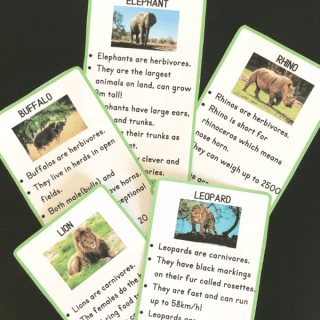 Big 5 Animals Printables- Kid World Citizen