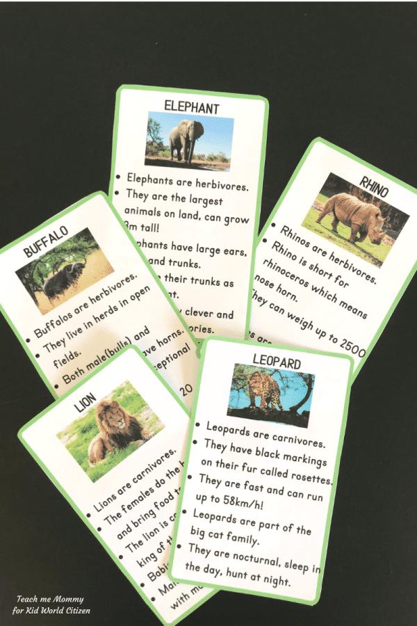 Big 5 Animals Printables- Kid World Citizen