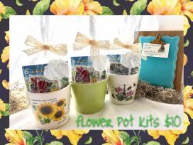 flower pot - paris