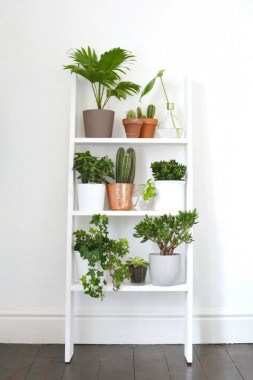 17 DIY Indoor Garden Ideas To Add Greenery During Winter 15