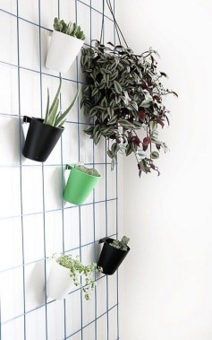 17 Easy DIY Indoor Plant Wall Decoration For Your Home Greenery 06